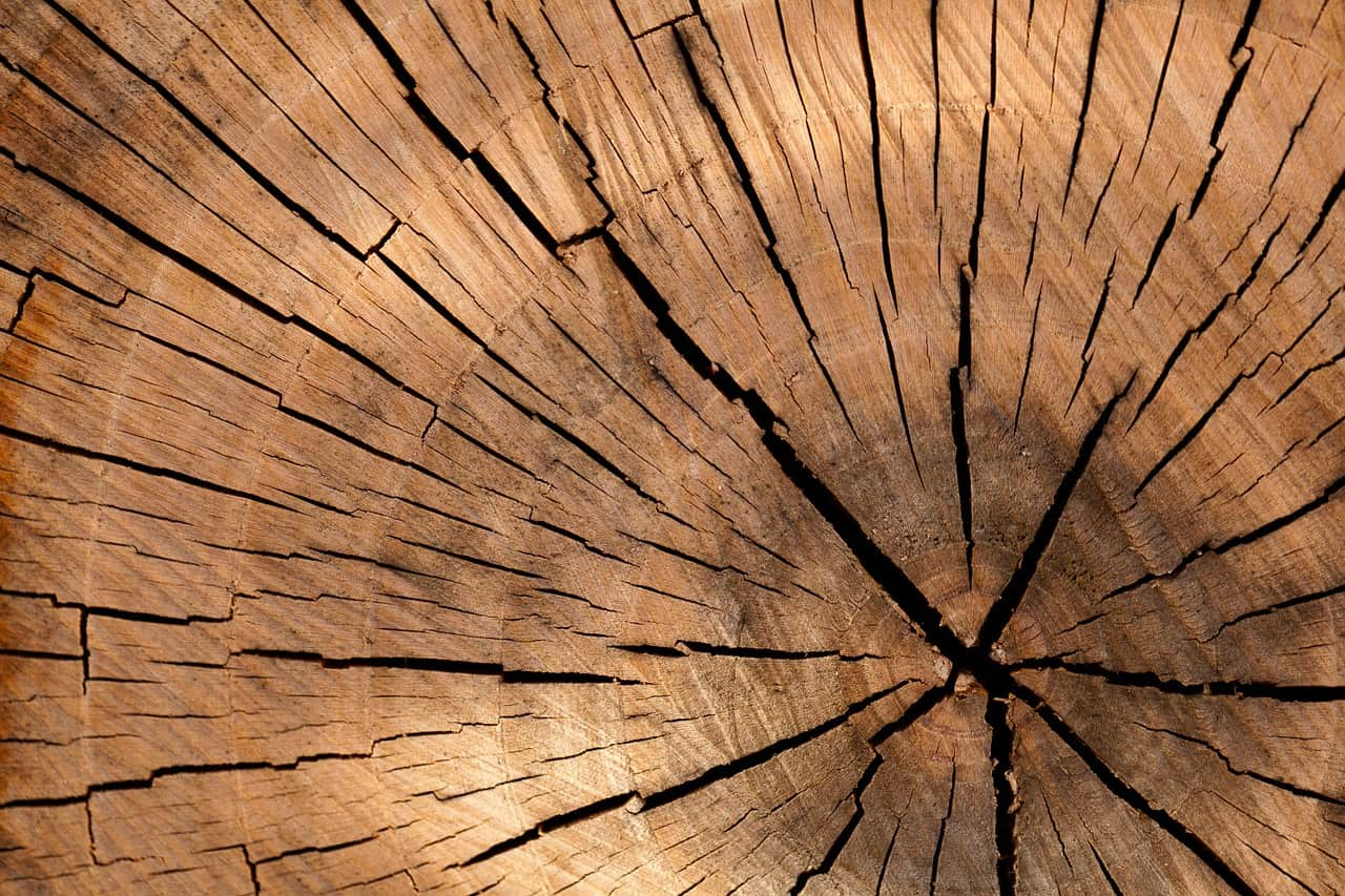 How Chopping Wood Increased My Sales
